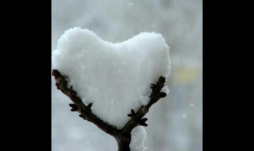 skream-this-love