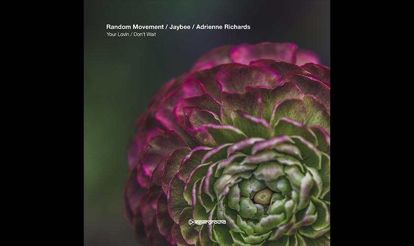 random-movement-jaybee-innerground-1