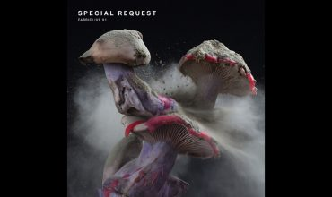 special-request-fabriclive-91